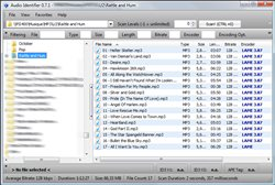 Audio Identifier - Main window